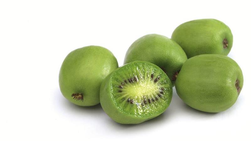 nergi-kiwi